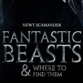 Menos de un año para el estreno de Animales Fantásticos y dónde encontrarlos