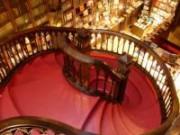 La famosa librería Lello de Oporto