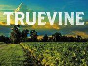 Leonardo DiCaprio, en negociaciones para adaptar la novela 'Truevine'
