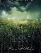 Netflix adaptará 'In the tall grass', relato de Stephen King y Joe Hill