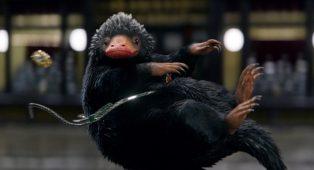 J.K. Rowling está escribiendo el guion de Animales Fantásticos 3