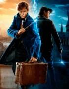 La saga de Harry Potter aterrizará en Netflix