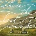 Where the Lost Wander es la próxima novela de Amy Harmon