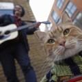 Muere el famoso gato callejero Bob